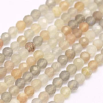 Natural Moonstone Beads Strands, Dyed, Faceted, Round, 3mm, Hole: 0.5mm; about 132pcs/strand, 15.7inches(40cm)(G-F509-06-3mm)