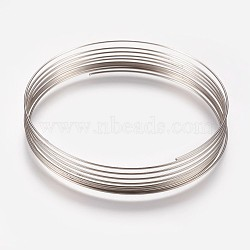 Iron Wires, Platinum, 55mm in diameter, 24 Gauge, 0.5mm wide; 10loops/pc(MW-F001-10)