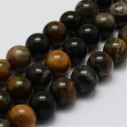 Pétrifiés bois brins de perles naturelles, rond, 8mm, trou: 1mm; environ 47 pcs/chapelet, 14.9'' (38 cm)(G-G687-26-8mm)