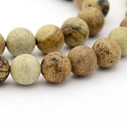 """Naturelle jaspe d'image chapelets de perles rondes, 10mm, trou: 1mm; environ 40 pcs/chapelet, 15.7""""(G-G-P070-55-10mm)"""