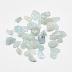 Perles turquoises naturelles, puces, pas de trous / non percés, 1~30mm(X-G-G903-07)