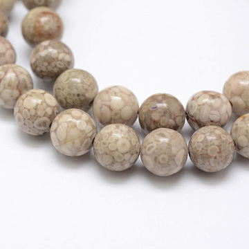 Natural Fossil Coral Beads Strands, Round, 8mm, Hole: 1mm, about 48pcs/strand, 15.3 inches(39cm)(X-G-P325-01-8mm)
