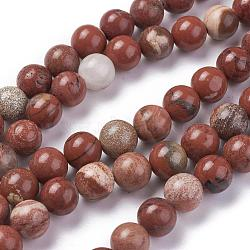 """Chapelets de perles en jaspe rouge naturel, rond, grade AB, rouge, 8mm, trou: 1mm; environ 48 pcs/chapelet, 15.1""""(G-F348-02-8mm)"""