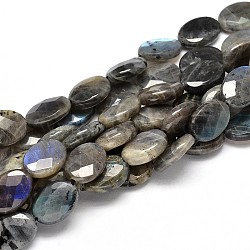 Flat Oval Natural Labradorite Bead Strands, Faceted, 20x15x6mm, Hole: 1mm; about 18pcs/strand, 15.74inches