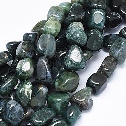 Chapelets de perles en agate mousse naturelle, nuggets, pierre tombée, 16~25x15~20mm, trou: 1.2mm; environ 18~22 pcs/chapelet, 15.3'' (39 cm)(G-F637-24)