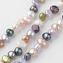 7mm Coloré Autres Perle De Culture Perles(X-PEAR-Q007-06)