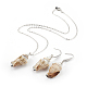 Electroplate Spiral Shell Pendant Necklaces and Dangle Earrings Jewelry Sets(SJEW-JS01007-03)-1