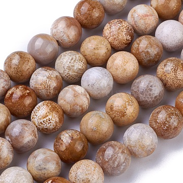 Natural Chrysanthemum Stone Beads Strands, Round, 10mm, Hole: 1mm; about 38~40pcs/strand, 15.3~15.7''(39~40cm)(G-G779-03A)