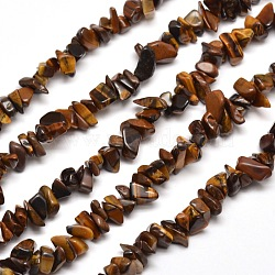 Естественно тигровые чип глаза шарик нити, 5~8x5~8 мм, отверстия: 1 mm; о 31.5