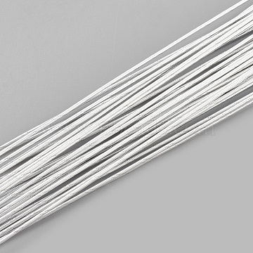 0.4mm WhiteSmoke Iron Wire