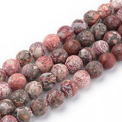 perles de jaspe peau de léopard rouge naturel brins, facettes, arrondir, 8~8.5 mm, trou: 1 mm; environ 47 perle / brin, 15.5(X-G-Q462-88-8mm)