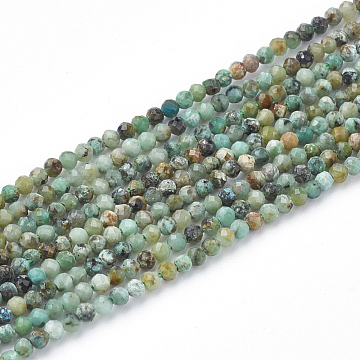 Natural African Turquoise(Jasper) Beads Strands, Faceted Round, 2mm, Hole: 0.3mm; about 230pcs/strand, 15.7 inches(X-G-T064-18-2mm)