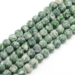 """Tache verte naturelle givrée jasper brins de perles rondes, 6mm, trou: 1mm; environ 63~65 pcs/chapelet, 14.9~15.6""""(G-M064-6mm-10)"""