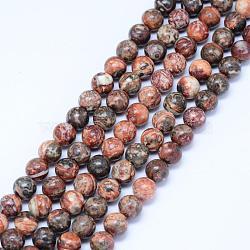 """Chapelets de perles de jaspe en peau de léopard naturel, rond, 6.5mm, trou: 1mm; environ 61 pcs/chapelet, 15.5"""" (39.5 cm)(G-J358-05-6mm)"""