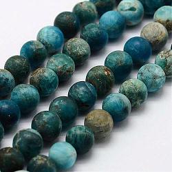 """Chapelets de perles en apatite naturelle, rond, mat, 5.5~6mm, trou: 1mm; environ 63 pcs/chapelet, 15""""~15.3""""(G-K193-6mm-12)"""