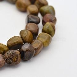 Pétrifiés bois brins de perles naturelles, 5~7mm, trou: 5~7 mm; environ 1(G-P070-41)