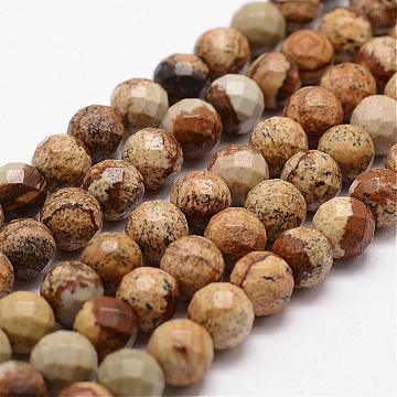 Natural Picture Jasper Beads Strands, Faceted, Round, 6mm, Hole: 1mm, about 61pcs/strand, 14.9 inches~15.1 inches(G-D840-47-6mm)