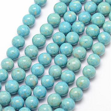 14mm SkyBlue Round Fossil Beads