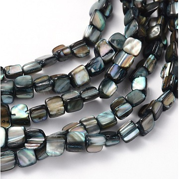 Erose Natural Shell Beads Strands, for DIY Craft Jewelry Making, Dyed, Gray, about 8~17.5mm long, 5~8mm wide, about 40pcs/strand, hole: about 1mm, 16 inches(X-PBB070Y)