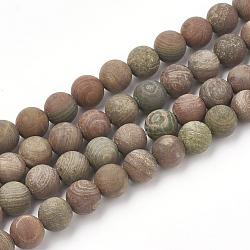 """Chapelets de perles en jaspe arc-en-ciel rouge, mat, rond, 8mm, trou: 1mm; environ 47 pcs/chapelet, 15.5""""(G-T106-134)"""