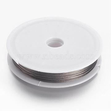 Tiger Tail Wire, Nylon-coated Stainless Steel, Silver, 0.45mm, about 164.04 Feet(50m)/roll(X-L0.45mm01)