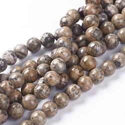 Chapelets de perles de jaspe en peau de léopard naturel, rond, 8mm, trou: 1mm; environ 53 pcs/chapelet, 15.94'' (40.5 cm)(G-G803-15B-8mm)
