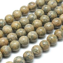 """Ronds de perles de pierres précieuses de jaspe de peau jaune léopard naturel, 10mm, trou: 1mm; environ 40 pcs/chapelet, 15.7""""(G-J302-12-10mm)"""