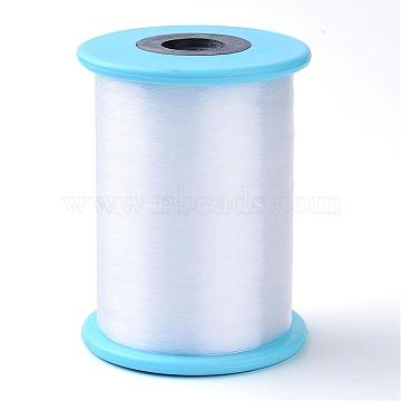 Fishing Thread Nylon Wire, White, 0.3mm, about 1968.5 yards(1800m)/roll(NWIR-R038-0.3mm-02)