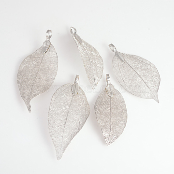 Electroplated Natural Leaf Big Pendants, with Iron Findings, Platinum Plated, 50~80x20~35x1mm, Hole: 3x6mm(X-IFIN-Q119-03K)
