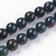 Natural Bloodstone Beads Strands(G-N0120-25-8mm)-1