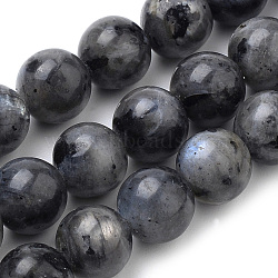 Natural Labradorite Beads Strands, Round, 10mm, Hole: 1mm; about 37pcs/strand, 15inches