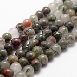 Bloodstone african naturel brins de perles rondes, 6mm, trou: 1mm; environ 61 pcs/chapelet, 14.9''~15.1''(G-G735-32-6mm)