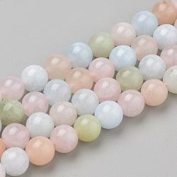 Природные морганит нитей бисера, круглые, 8x7.5 мм, Отверстие : 1 мм; около 46~49 шт / нитка, 15.5''(G-Q961-08-8mm)