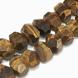 naturelles oeil de tigre brins de perles, nuggets, facettes, 8~17x13~22x8~15 mm, trou: 1 mm; environ 25~35 perle / brin, 15.7(G-S307-02)