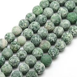 """Tache verte naturelle givrée jasper brins de perles rondes, 12mm, trou: 1mm; environ 30~32 pcs/chapelet, 14.9~15.6""""(G-M064-12mm-10)"""