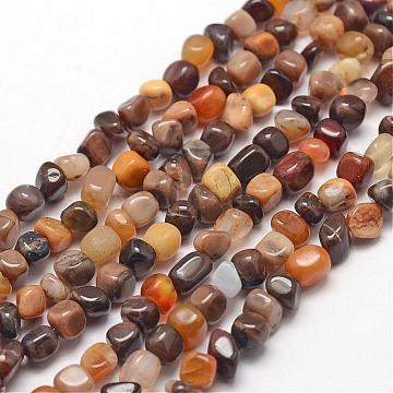 Natural Petrified Wood Beads Strands, Chip, 3~5x3~5x3~8mm, Hole: 1mm; about 85~90pcs/strand, 15.7 inches(40cm)(G-F465-20B)