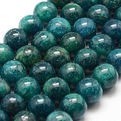 """Chapelets de perles en apatite naturelle, rond, 12mm, trou: 1.5mm; environ 32 pcs/chapelet, 15.5"""" (39.5 cm)(G-F475-06-12mm)"""