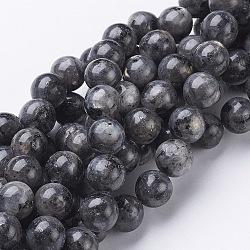 Natural Labradorite Beads Strand, Round, about 10mm, Hole: 1mm; about 40pcs/strand, 15.5