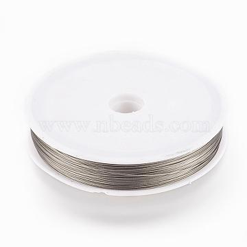 70M/Roll Tiger Tail Wire,Nylon-coated Steel,Light Grey ,0.45mm(TWIR-70R0.45MM-1)