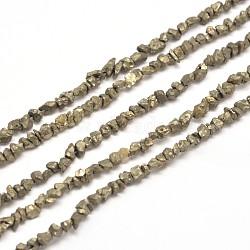 """Pépites de pyrite naturelles perles brins, 3~5x3~5mm, trou: 1 mm; environ 15.7""""(G-I125-84)"""