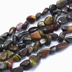 Chapelets de perles d'œil de tigre naturel, nuggets, 8~14x6~10x4~10mm, trou: 0.8mm; environ 40~43 pcs/chapelet, 15.3~15.7'' (39~40 cm)(G-G765-37)
