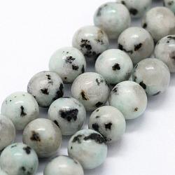 jaspe de sésame naturel / perles de jaspe kiwi, arrondir, 8 mm, trou: 1 mm; environ 46 perle / brin, 14.76 (37.5 cm)(X-G-I199-29-8mm)