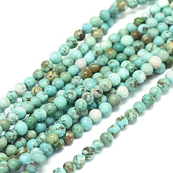 Natural Howlite Beads Strands, Dyed & Heated, Round, 4mm, Hole: 0.8mm; about 92pcs/strand, 15.35 inches(39cm)