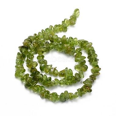 Natural Peridot Beads Strands(X-G-O049-A-07)-2