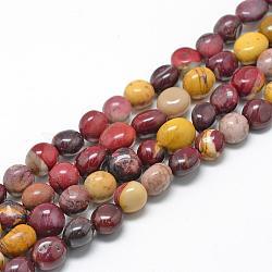 """Chapelets de perles en mookaite naturelles, ovale, 8~15x7~12x4~12mm, trou: 1mm; environ 30~45 pcs/chapelet, 15.7""""(G-R445-8x10-11)"""