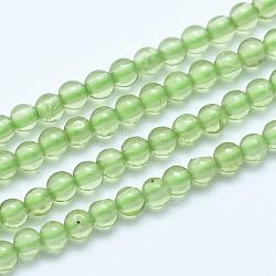 """Chapelets de perles en préhnite naturelle, rond, 8mm, trou: 1mm; environ 50 pcs/chapelet, 15.7"""" (40 cm)(G-E483-07A-8mm)"""