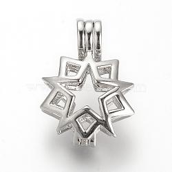 pendentif pendentif allor diffuseur, pendentifs cage, étoiles, platine, 24.5x17.5x9 mm, trou: 3.5x4.5 mm; mesure intérieure: 13 mm(X-PALLOY-S062-25P)