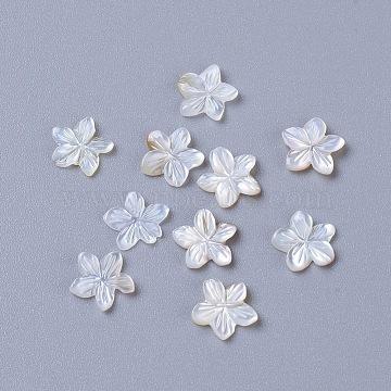 Natural Sea Shell Cabochons, Flower, 6x1mm(SSHEL-L014-01)
