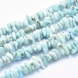 "Chapelets de perles en larimar naturel, puce, 7~10x2~4mm, trou: 0.8 mm; 15.9""(G-K256-34A)"