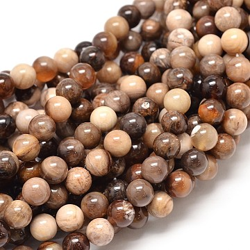 Natural America Fossil Stone Round Bead Strands, 10mm, Hole: 1mm; about 40pcs/strand, 16.1 inches(G-P075-51-10mm)